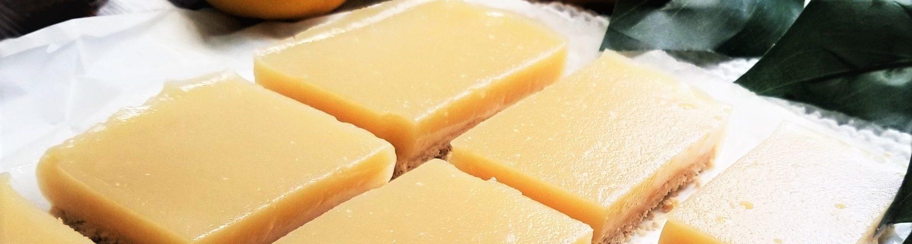 Lemon Squares Close Up